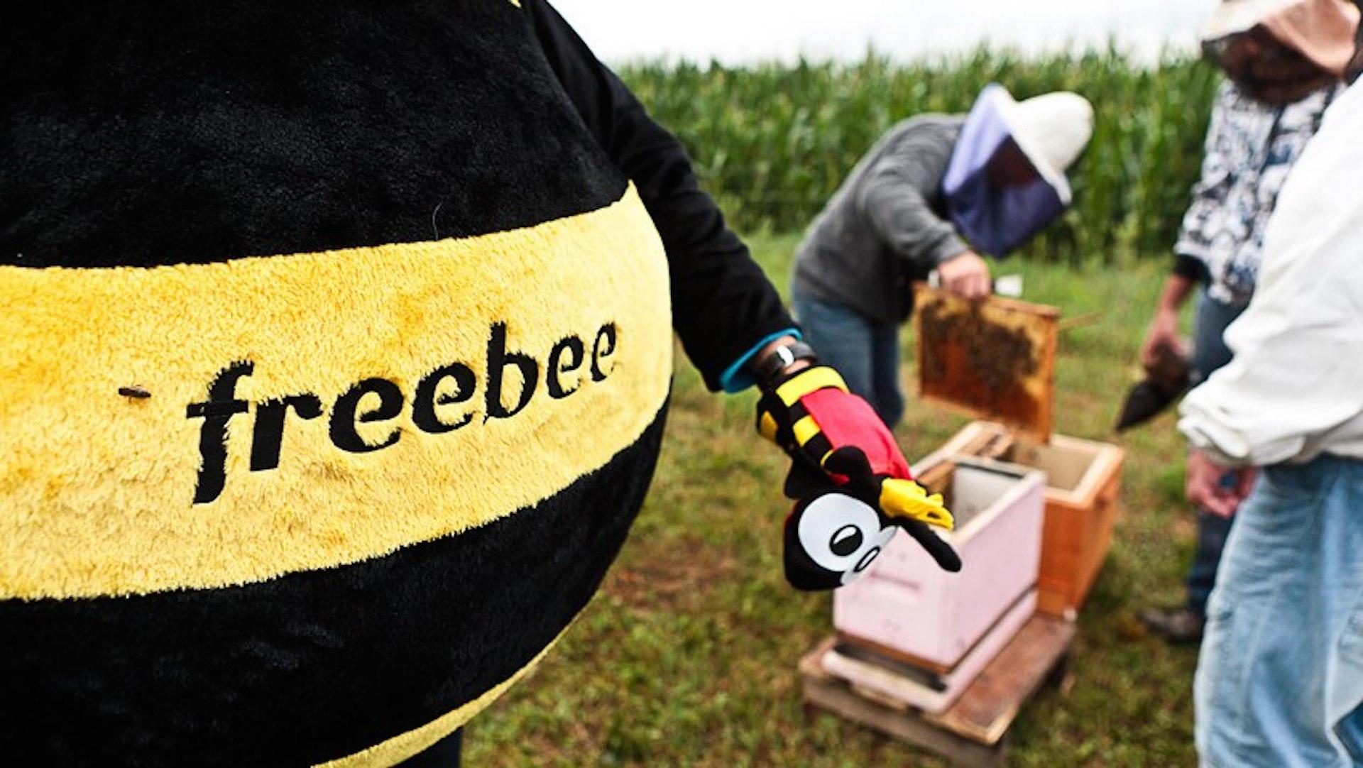 Dzięki zaangażowaniu klientów uratowali już milion pszczół aplikacja mediarun freebee
