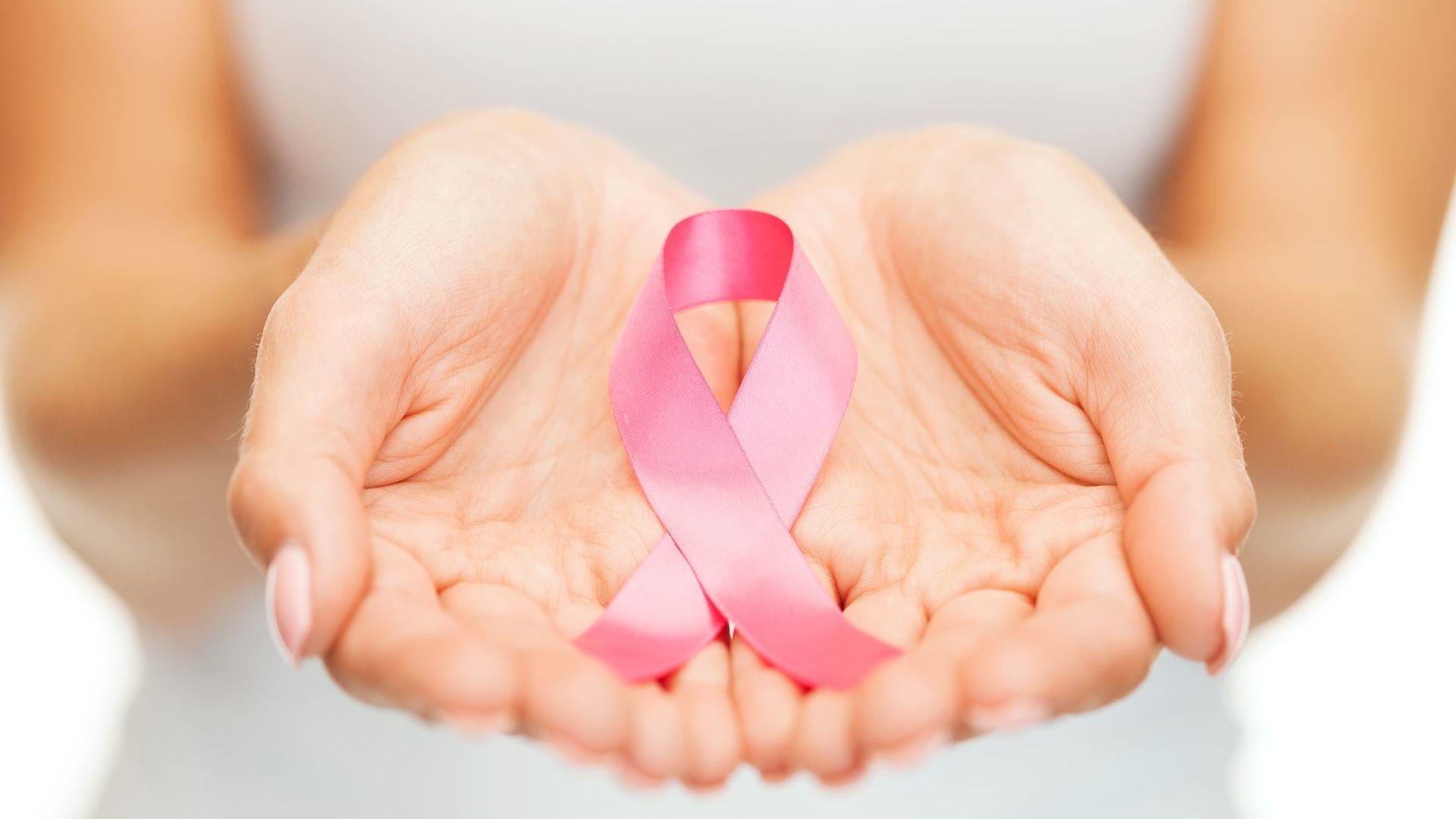 Kammel zachęca do samobadania piersi Kampania Fotolia 58302790 Subscription Monthly XXL