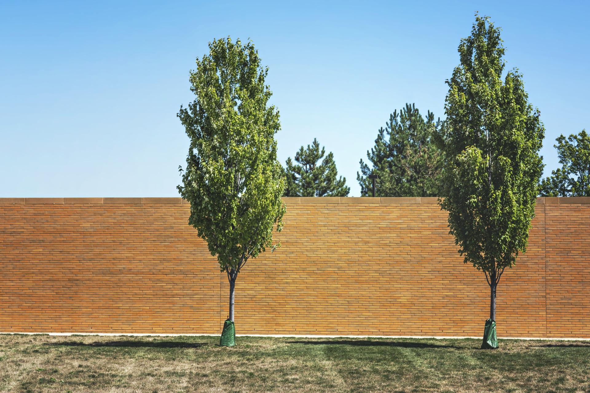 A co jeśli mur USA-Meksyk naprawdę powstanie? ciekawostki mediarun wall trump usa meksyk