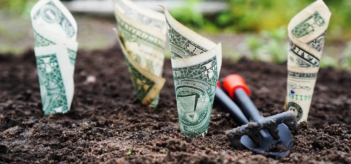 5 rad jak uniknąć dodatkowych kosztów podczas wakacji Open Finance kosztów