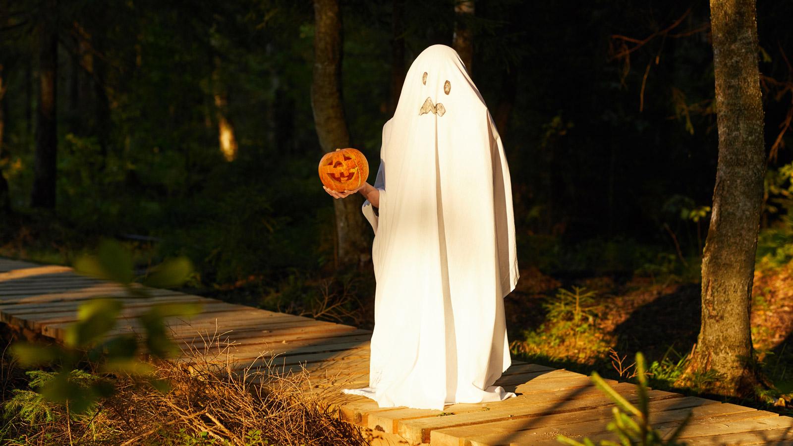 Jaki jest stosunek Polaków do Halloween? Polacy mediarun spooky halloween 2019