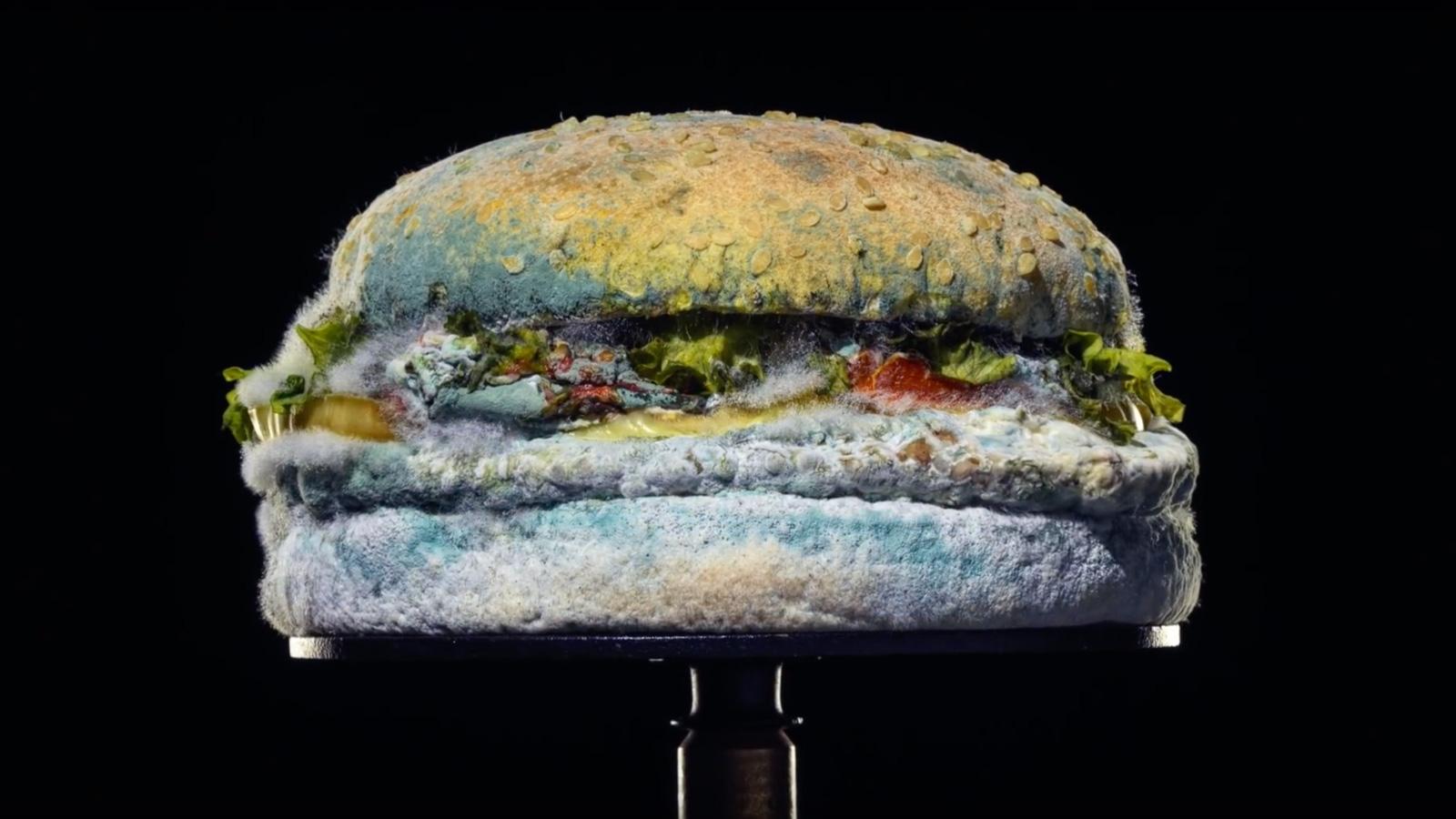 Burger King pokazuje pleśń w swojej nowej kampanii Burger King mediarun burger king kanapka plesn 2020
