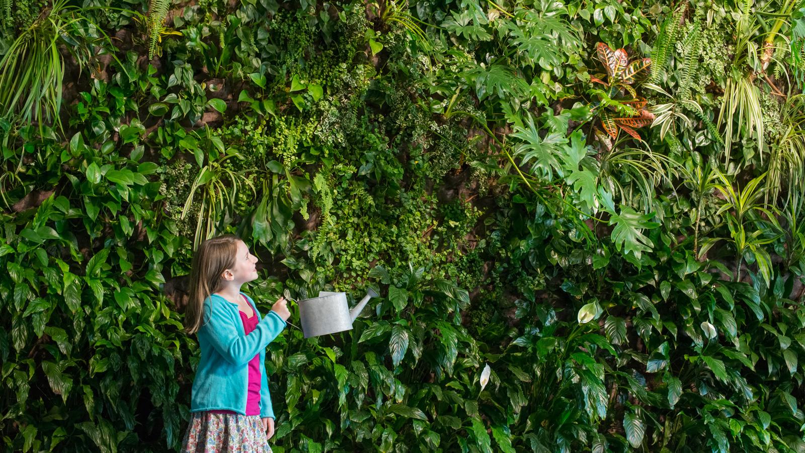 ŠKODA przygotowują zieloną rewolucję na dachach? eko mediarun eko miasto rosliny 2020