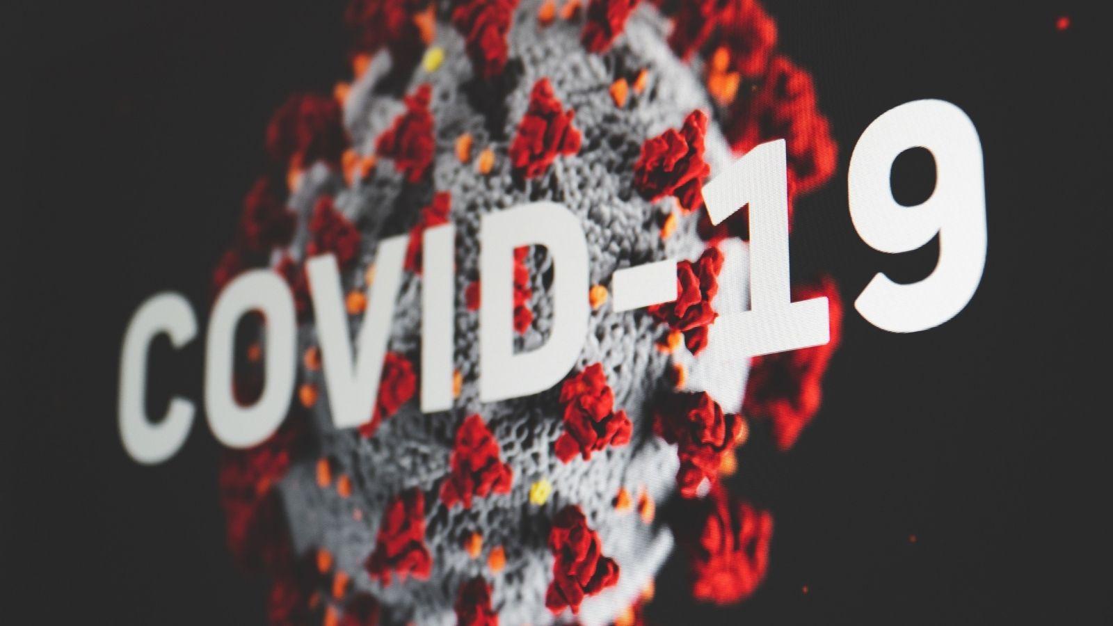Ponad połowa firm zrezygnowała z inwestycji z uwagi na pandemię! [RAPORT] Badania mediarun covid 19 picture