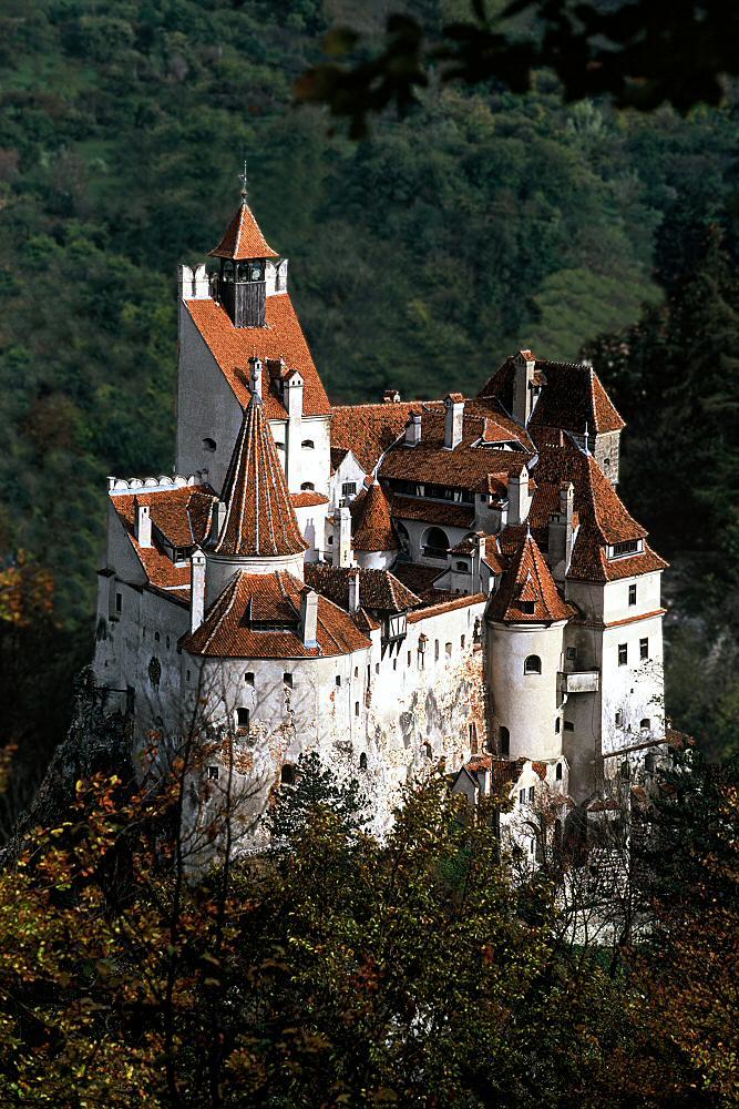 Zamek w Branie, źródło Bran Castle